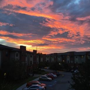 Sunsets in Savannah