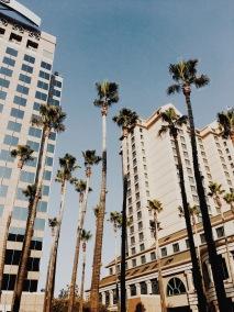 Exploring San Jose, California