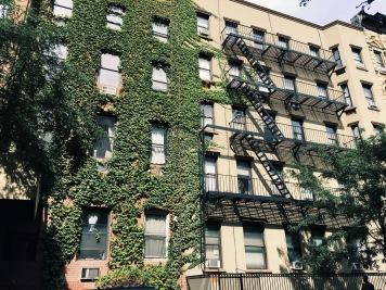 Exploring Brooklyn, New York