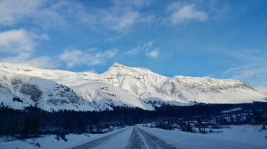 Road from Calgary to Jasper