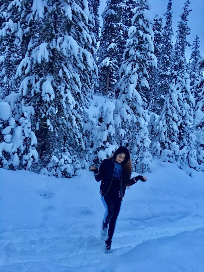 First Snowfall at Lake Louise, Banff