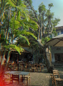 barefoot cafe, colombo, sri lanka, where to eat and drink in colombo